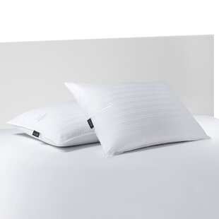 Polyfill Pillow (Set Of 2) by Lauren Ralph Lauren Discount