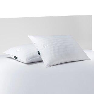 Polyfill Pillow (Set of 2) by Lauren Ralph Lauren