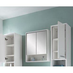 Graddy 57 X 71.6cm Wall Mounted Mirror Cabinet By Brayden Studio