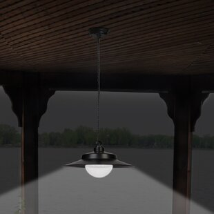 1-Light LED Outdoor Pendant by Sunforce