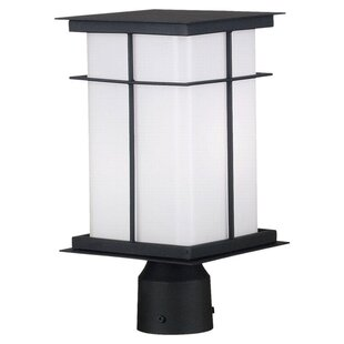Mesa 1-Light Lantern Head by Wildon Home?