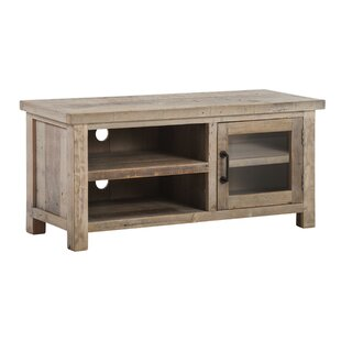 Horsham 1 Door 1 Shelf Reclaimed Wood TV Stand For TVs Up To 48