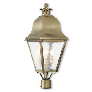 Alcott Hill Goodhue Outdoor 2-Light Lantern Head
