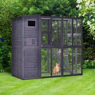 Cat Houses Wayfair Ca
