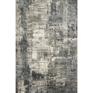 Bargain Aiken Ivory/Charcoal Area Rug By Williston Forge