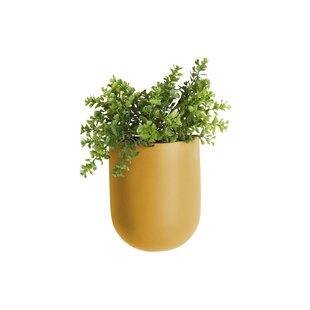 Coulter Oval Ceramic Wall Planter Image