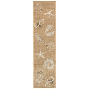 Desantiago Shells Sand Indoor/Outdoor Area Rug