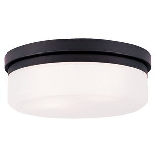 Coupon Cerie 2-Light Glass Shade Flush Mount By Ivy Bronx