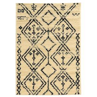 Find the perfect Westland Ivory/Black Indoor/Outdoor Area Rug By Threadbind