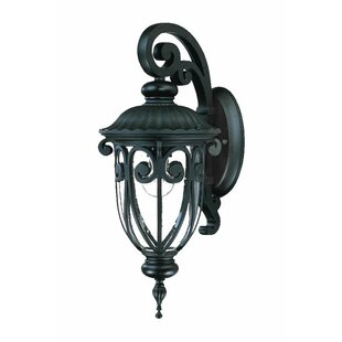 Astoria Grand Appalachian Outdoor Wall Lantern