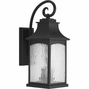 Darby Home Co De Witt 2-Light Outdoor Wall Lantern