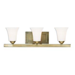 Reviews Grady 3-Light Vanity Light By Alcott Hill