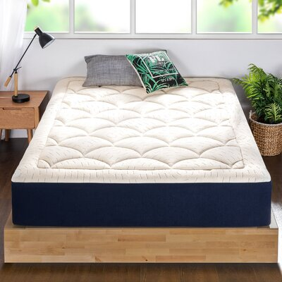 12 Inch Twin Mattress Wayfair