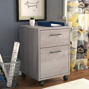 Beachcrest Home Oridatown 2-Drawer Mobile Vertical Filing Cabinet