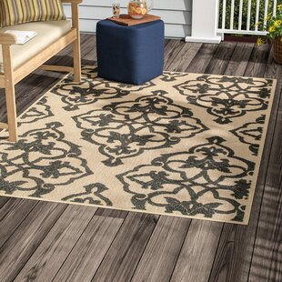 Best Hargraves Sand/Charcoal Outdoor Area Rug By Charlton Home