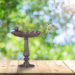 Lanford Bird Bath By Sol 72 Outdoor