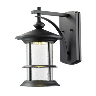 Breakwater Bay Crow 18-Light Outdoor Wall Lantern