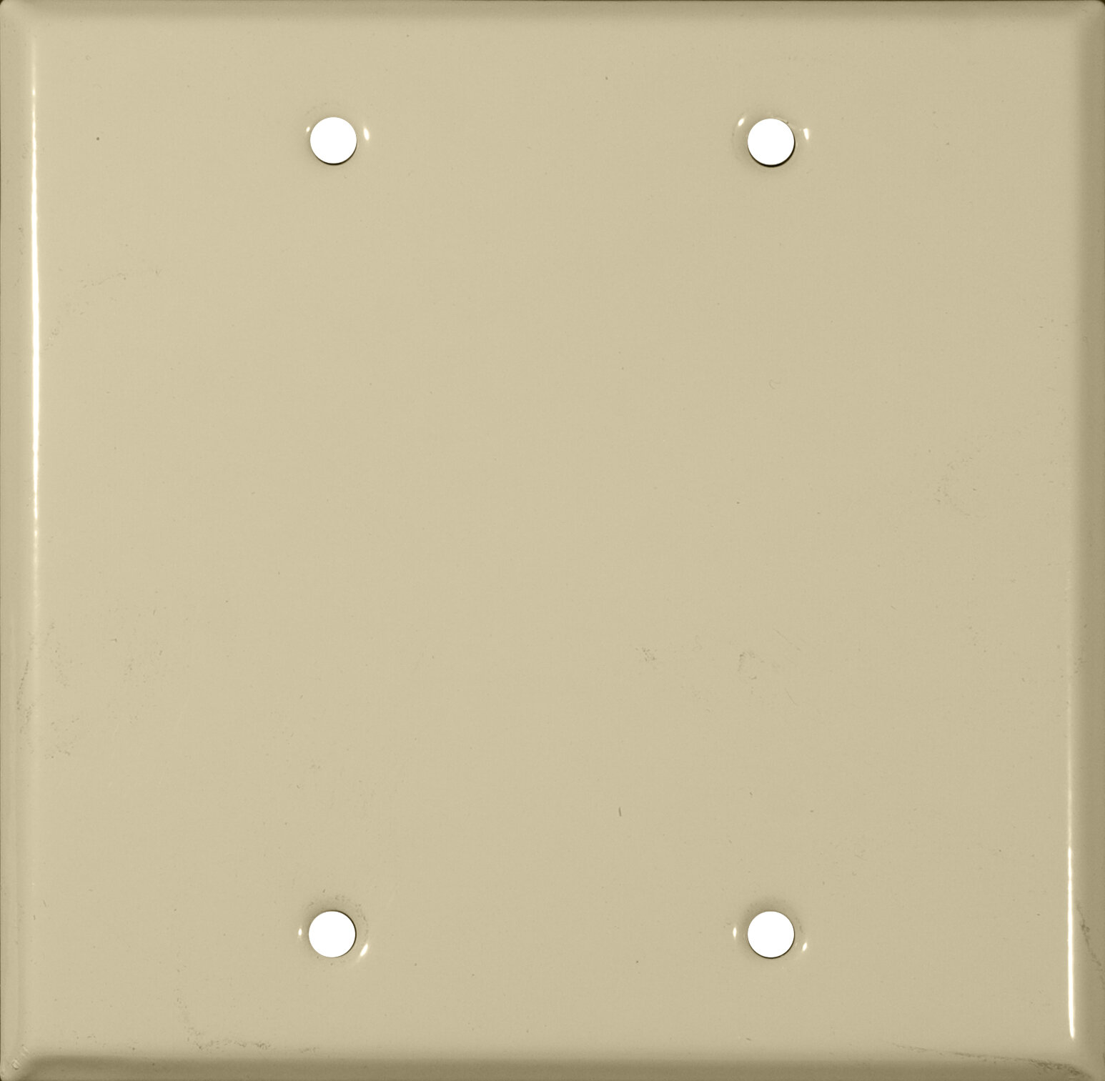 Morris Products Blank Wall Plate Wayfair