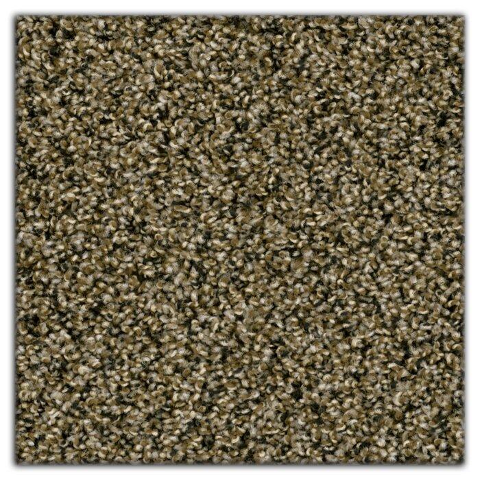 Purecolor Soil Shield Carpet Reviews Lets See Carpet New