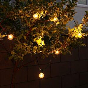 All Year Around Outdoor 10 Light Globe String Light