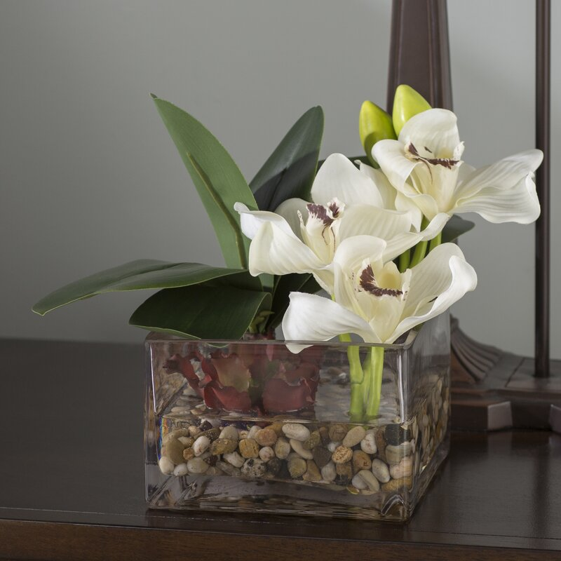 floral home decor orchid floral design wayfair.htm world menagerie orchids and succulent centerpiece in glass vase  succulent centerpiece in glass vase