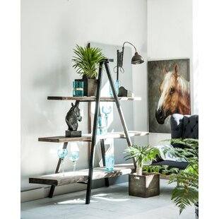 Ladder Bookcase by A&B Home