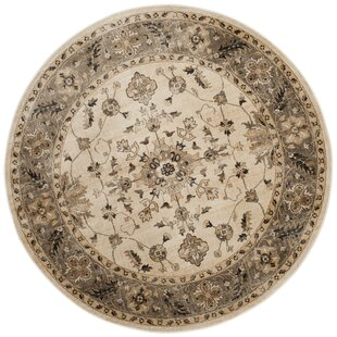 Tuller Stone & Mouse Oriental Ivory Area Rug by Charlton Home