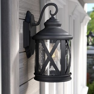 Zeigler Outdoor Wall Lantern