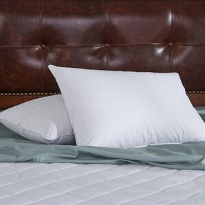 Feather Pillow (Set of 2) by Puredown