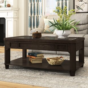 Domingues Schroom Coffee Table By Darby Home Co