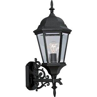 Alcott Hill Triplehorn 1-Light Outdoor Medium Sconce