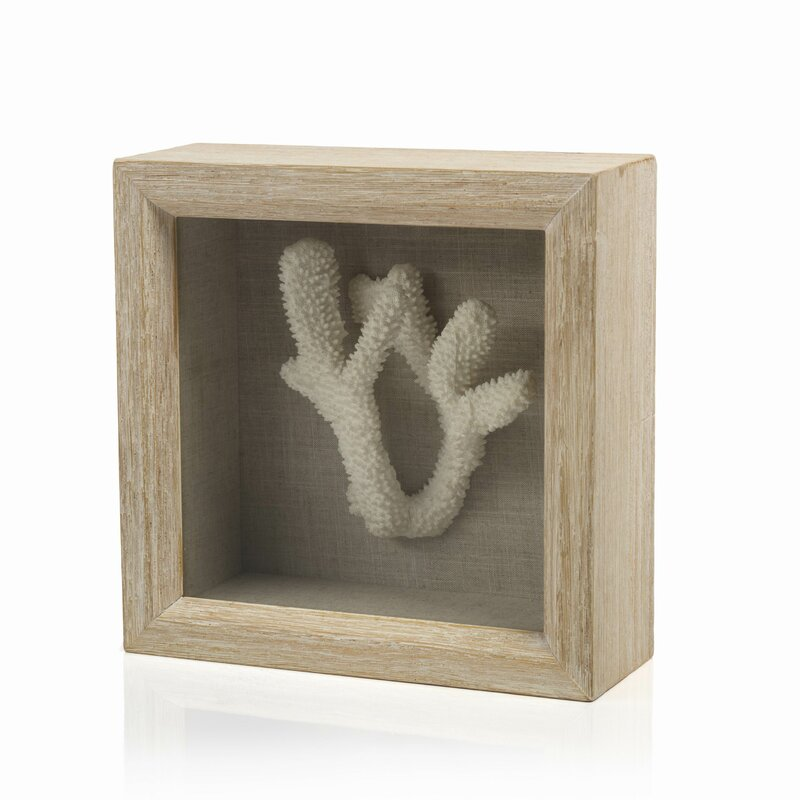 Staghorn C In Shadow Box Wall Décor