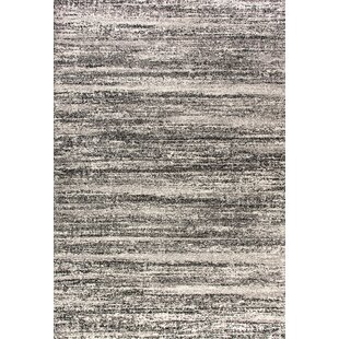 Affordable Brycen Black / White Area Rug ByWilliston Forge