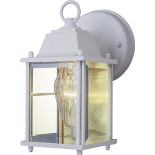 Best Reviews 1-Light Outdoor Wall Lantern By TransGlobe Lighting