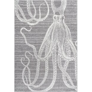 Buy Gray/White Area Rug By Thomas Paul