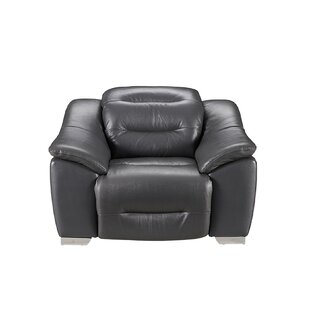 Pippin Leather Power Recliner