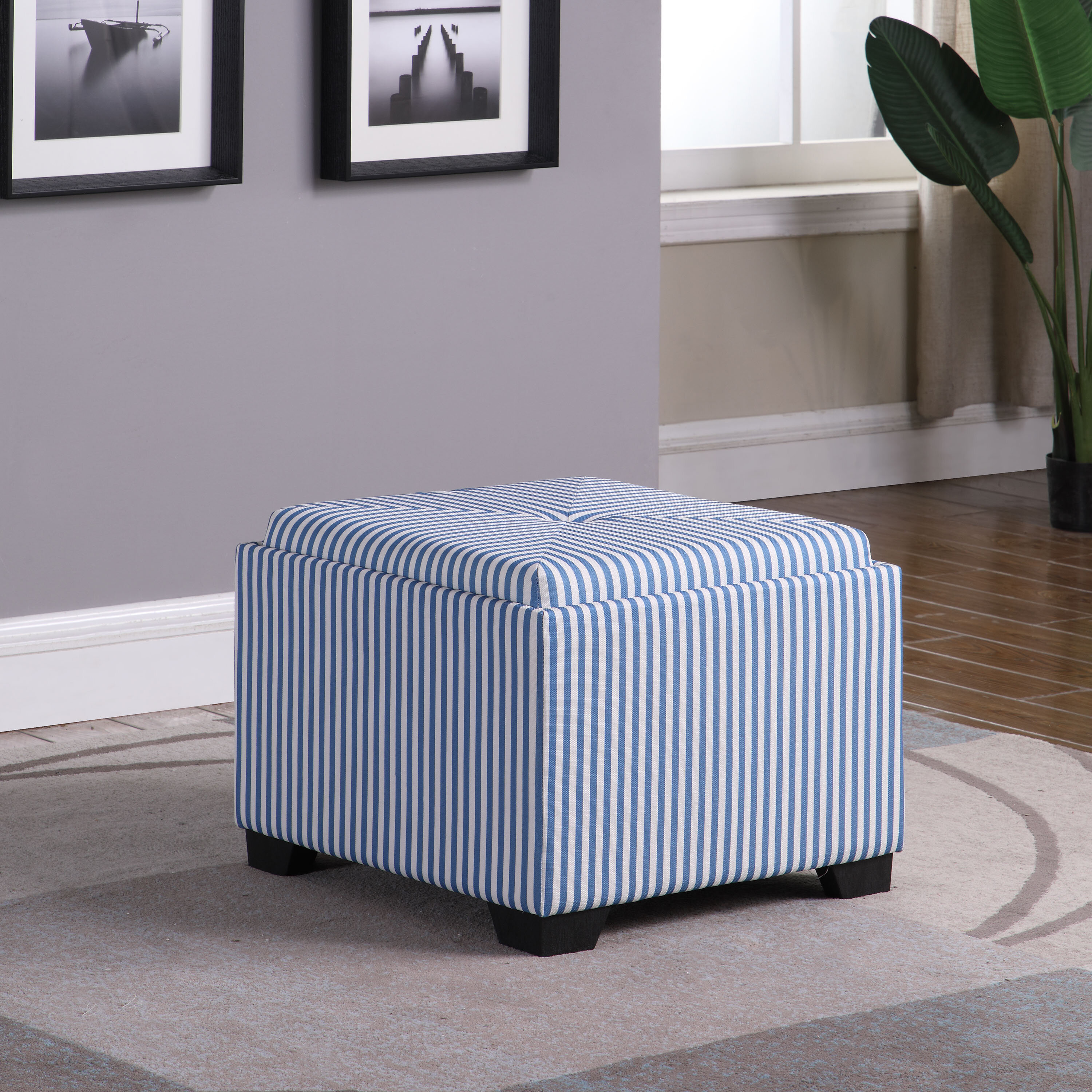 Magnificent Nathan Stripes Single Tufted Storage Ottoman Camellatalisay Diy Chair Ideas Camellatalisaycom