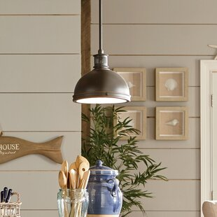 Birch Lane™ Orleans 1-Light Dome Pendant