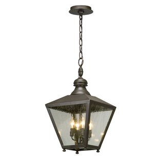 Sybil 4-Light Outdoor Hanging lantern