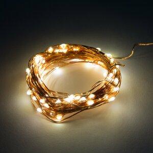 20-Light 6 ft. Fairy String Lights