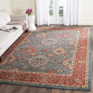 Astoria Grand Area Rugs Birch Lane