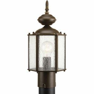 Alcott Hill Triplehorn 1-Light Lantern Head