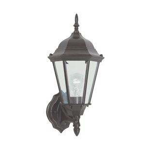 Bargain Raritan 1-Light Outdoor Sconce By Alcott Hill