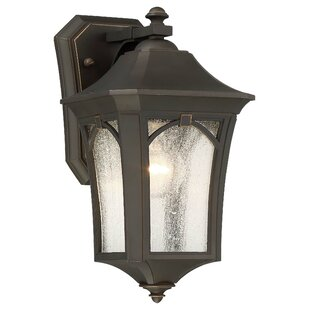 Coyan 1-Light Outdoor Wall Lantern