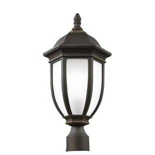 Charlton Home Nicolette 1-Light Outdoor Lantern Head