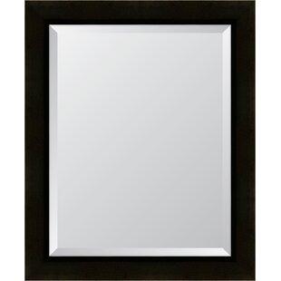 Melissa Van Hise Sumatra Resin Frame Wall Mirror