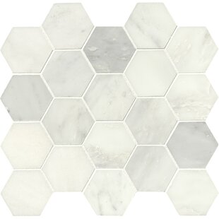 Greecian Hexagon Polished 3 X Marble Mosaic Tile In White