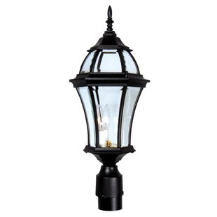 Buy clear Plantation 1-Light Lantern Head By Special Lite Products