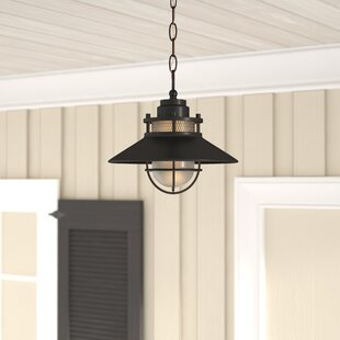 Order Waterton 1-Light Outdoor Pendant By Breakwater Bay