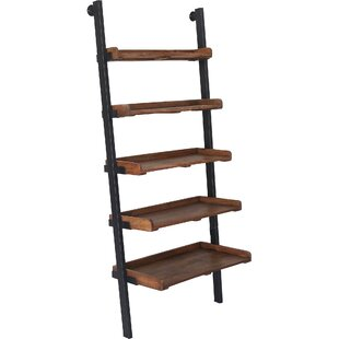 Jebediah Ladder Bookcase by 17 Stories